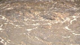 Ondulación del agua, agua contaminada, río contaminado Ondulación sucia de la espuma Primer est?tico metrajes