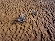Ondulaciones de la arena Imagen de archivo