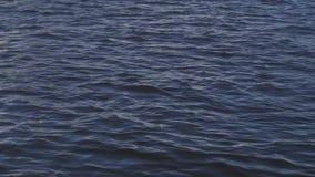 Ondulaciones en el lago ondulación del agua en el lago Naturaleza y agua almacen de metraje de vídeo