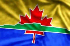 Ondulation de Thunder Bay et illustration colorées de drapeau de plan rapproché illustration de vecteur