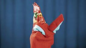 Ondulation, regard autour et arcs rouges de jouet de marionnette de main de coq sur le fond bleu banque de vidéos