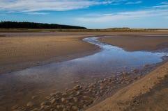 Ondulations dans le sable Photographie stock libre de droits