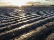 Ondulations dans le sable au coucher du soleil Photos stock