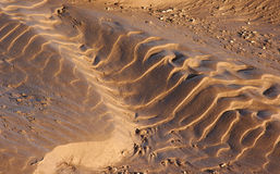 Ondulations de boue Photos libres de droits