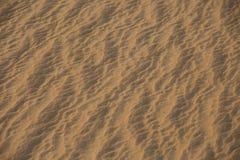 Ondulations de début de la matinée dans le sable de désert Image libre de droits