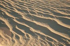 Ondulations de sable Photo stock