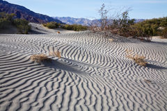 Ondulations de sable, Death Valley Photographie stock
