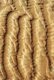 Ondulations de sable sur la plage photo libre de droits