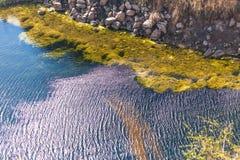 Ondulations sur le lac Images libres de droits