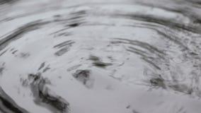 Ondulazioni, cerchi di acqua piccoli movimenti astratti dell'acqua video d archivio