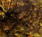 Ondulazioni colorate giallo su acqua Fotografia Stock Libera da Diritti
