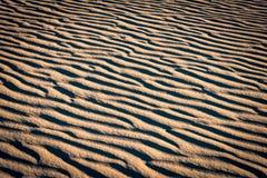 Ondulazioni della sabbia Fotografia Stock