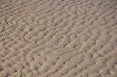 Ondulazioni nella sabbia Fotografia Stock Libera da Diritti