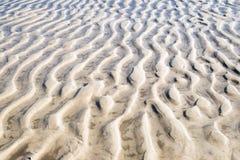 Ondulazioni nella sabbia a bassa marea Fotografie Stock Libere da Diritti
