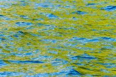 Ondulazioni variopinte del mare Fotografia Stock Libera da Diritti