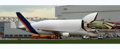 One airbus beluga without any logo. Airbus beluga without any logo Royalty Free Stock Photo