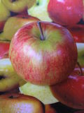 One apple. Photograph of an apple on top of a dish with a print of apples Stock Images