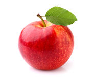 One apple. In closeup on a white background Royalty Free Stock Image