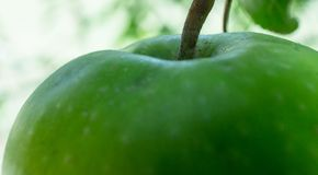 One apple a day is good for health. One apple a day keeps the doctor away Stock Images
