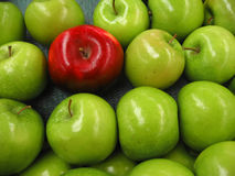 One apple among lots of green Stock Photo