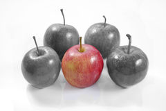 One apple vs four black and white apples on isolated white backg. Conceptual photo one vs many Stock Images