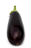 One aubergine Royalty Free Stock Photography