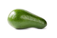One avocado Stock Photography