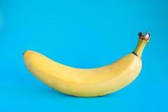 One banana on blue Stock Photo