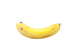 One banana in white background Royalty Free Stock Photography