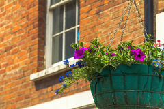 One basket of flowers on a lamp post in Windsor town Royalty Free Stock Photo