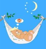 One bear having a nice dream Stock Photo