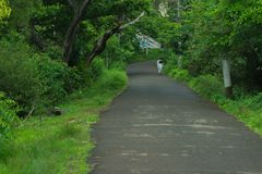 Beautiful destinations of kerala. One of the beautiful destinations in kerala, calm and quiet road to walk and relax in the evening Stock Image