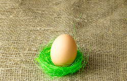 One beige egg lying on the filler sisal lime green color on a wooden table. Covered with burlap royalty free stock photography