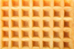 One Belgian waffle. Texture, top view Royalty Free Stock Photo