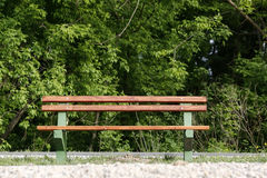 One bench in park wit green tress. One old wooden bench in park wit green tress Stock Image