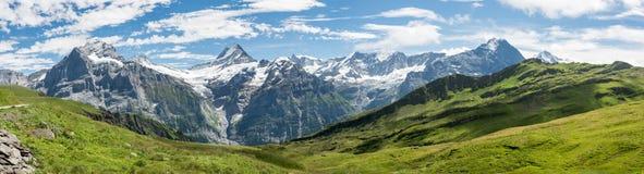 Bermese Alps near Grindelwald in Switzerland Royalty Free Stock Image