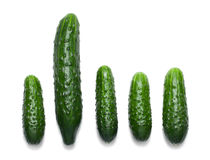 One big and four small cucumbers isolated Stock Photography