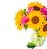One bight sunflower Royalty Free Stock Photos