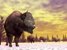 Bisons in winter - 3D render Stock Photography