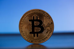 One bitcoin on gold backround Stock Photo