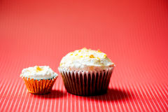 One-bite small chocolate cupcake and normal size cooke Stock Image