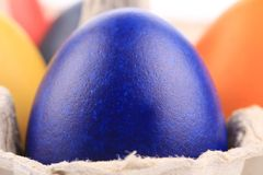 One  black blue easter egg at cardboard Stock Photography