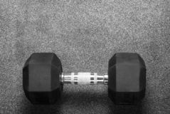 One black dumbbell royalty free stock photo