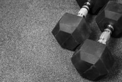 One black dumbbell stock photography
