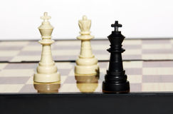 One black king against the white king and a queen. The remained one black king against the white king and a queen where game is already almost finished Stock Images