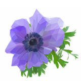 One blue anemone flower. Low poly illustration one blue anemone flower royalty free illustration