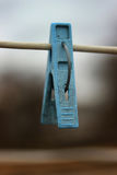 One blue clothespins close-up hanging on a rope for drying clothes Stock Image