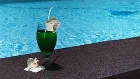 One blue exotic cocktail by the pool Stock Images