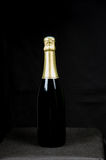 One bottle sparkling wine Royalty Free Stock Image