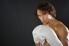One boxer Royalty Free Stock Photo